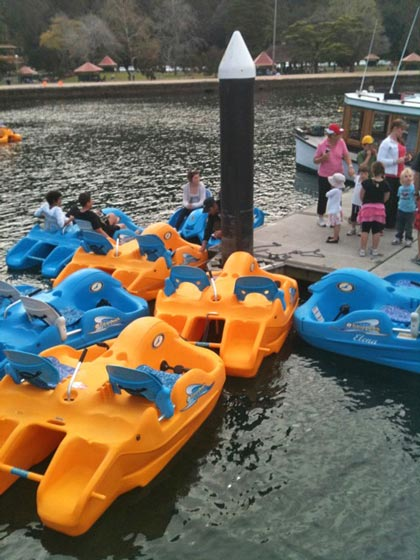 Paddle Boats for Hire